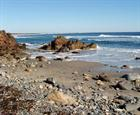 guide to ogunquit