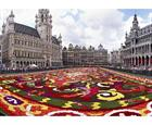 guide to brussels